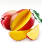 Export of mango from Ecuador | Import of mango